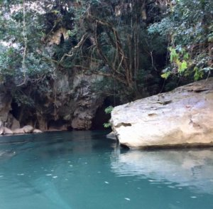 The tunnel out of Kong Lor Cave is hidden. The tunnel exit out of Kong Lor Cave is hidden.