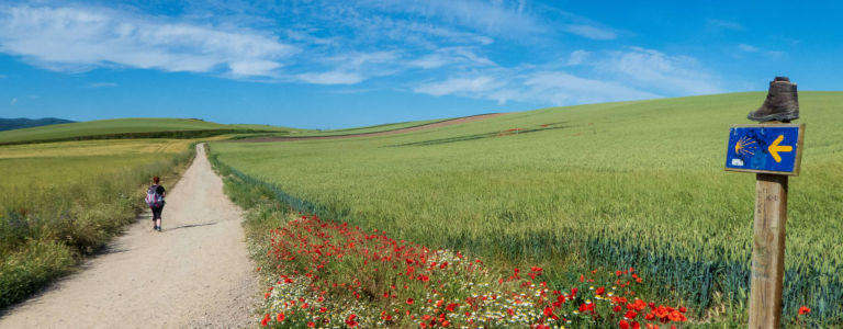 21 things that surprised me about walking the Camino de Santiago