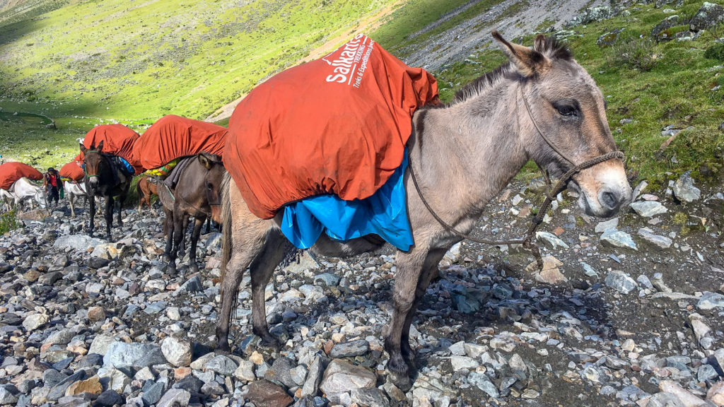 Deciding what to put on your packing list for your Salkantay Trek duffle bag is important!