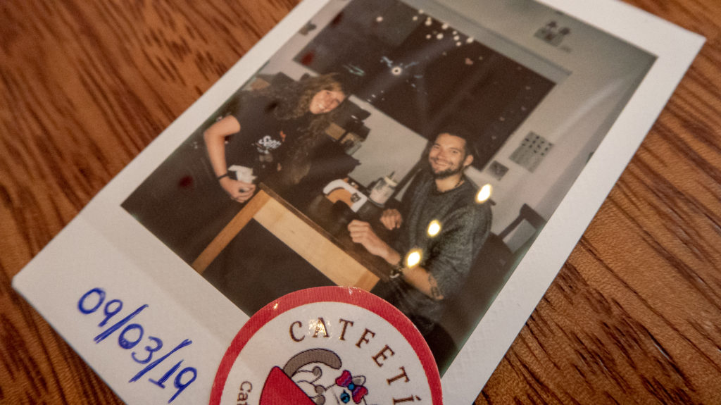 Polaroid from visit to cat cafe Peru