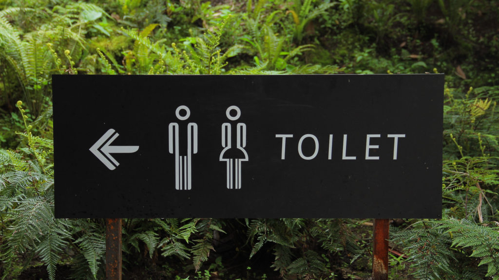Toilet sign- journeys from hell