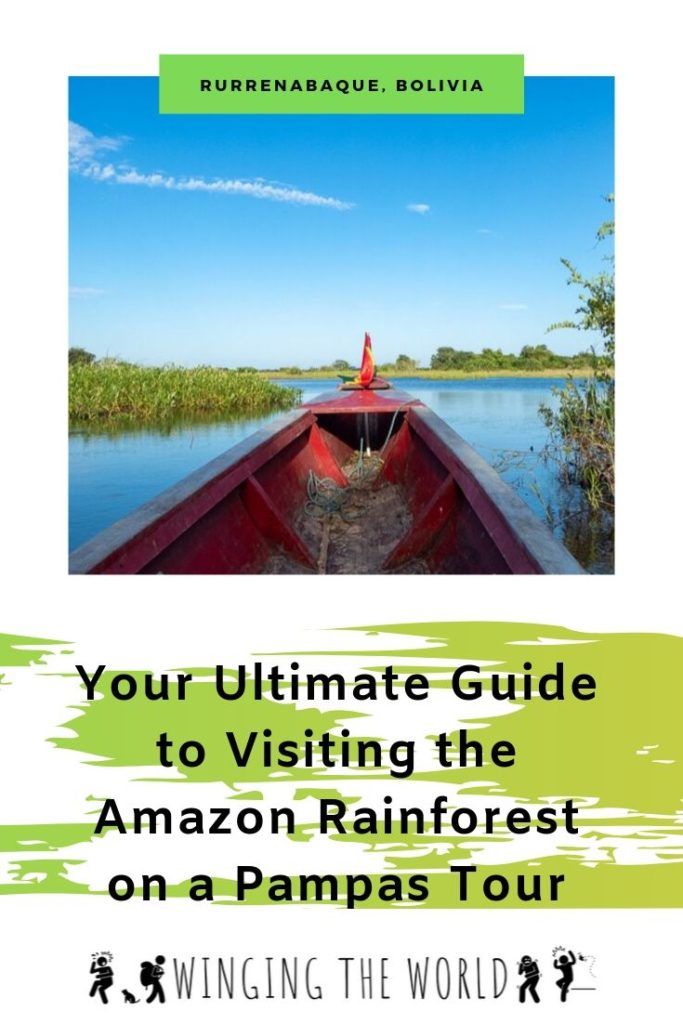 Your Ultimate Guide to Visiting the Amazon Rainforest on a Pampas Tour pin