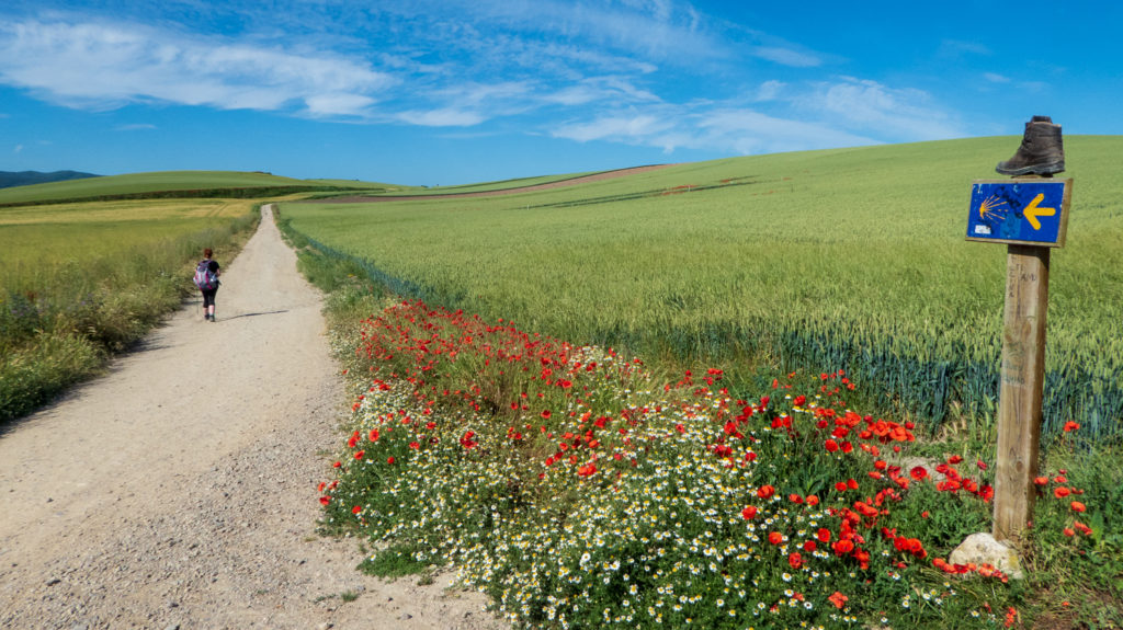 21 things that surprised me about the Camino de Santiago