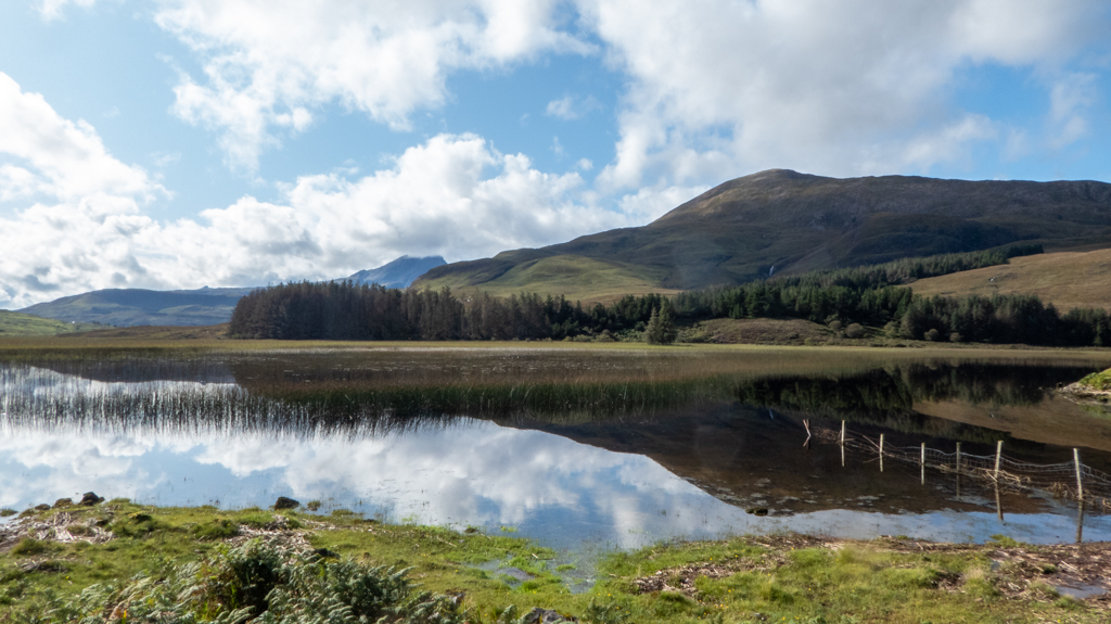 Midges in Scotland: Everything You Need to Know About the Highland Midge!