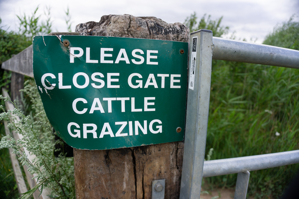 Cattle grazing sign